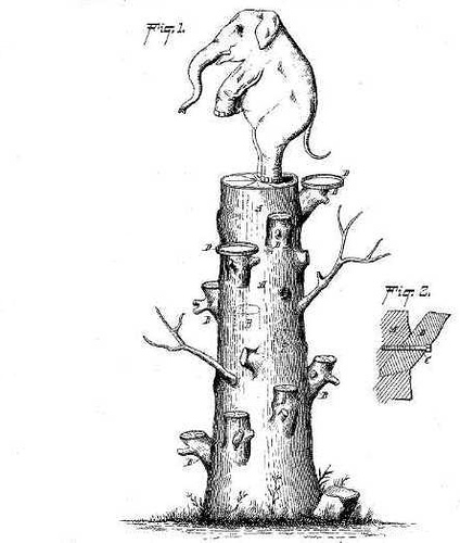 elephant-tree-ladder.jpg