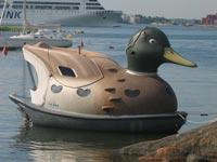 duckboat_finduck_honey4.jpg