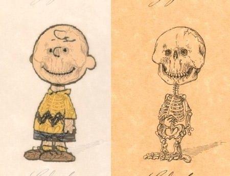 browns-anatomy.jpg