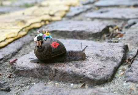snailgraffiti031