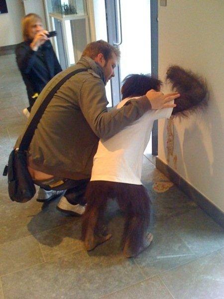 Orangutan Puke_MrReid 090608