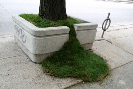 Planter Spill