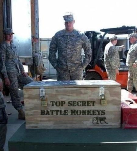 Top Secret Battle Monkeys Briefing
