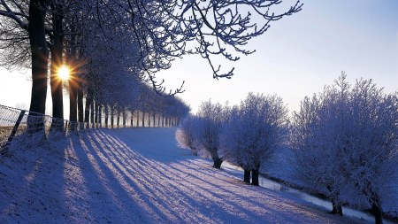 winter-in-nederland