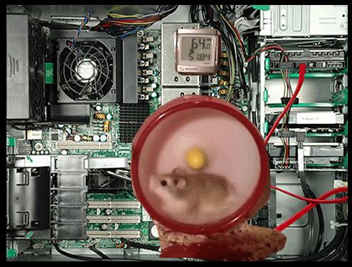Rodent RAM