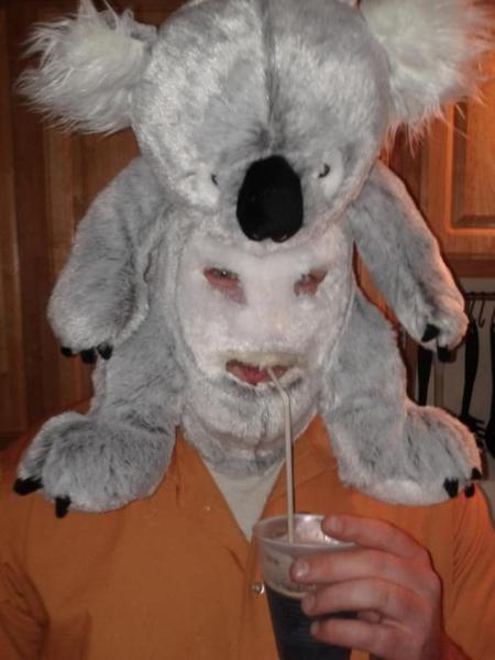 Creepy Koala