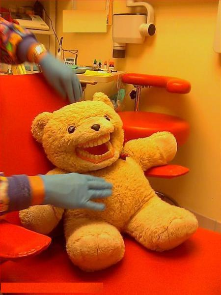 Teddy Dental
