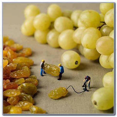 Making Grapes