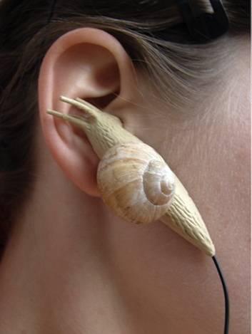 Ear Snails