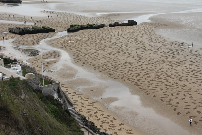 D-Day 1944 Tribute -The-Fallen-25