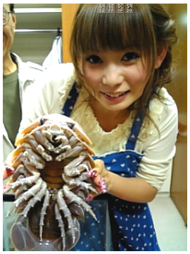 Giant Isopod Girl