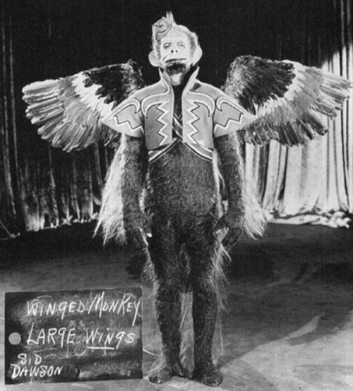 Winged Monkey Large Wings