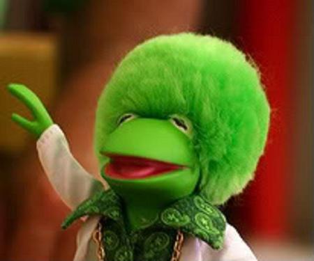 Kermit Afro
