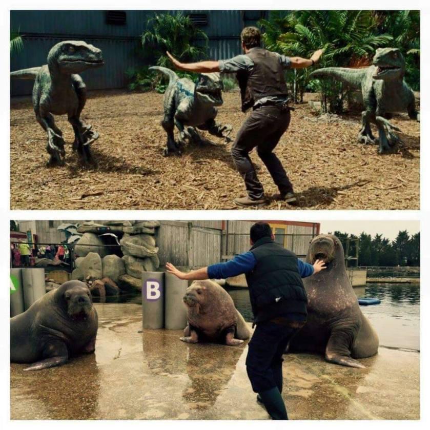 Hollywood vs. Reality