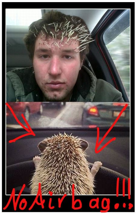 Riding With The Hedgehog