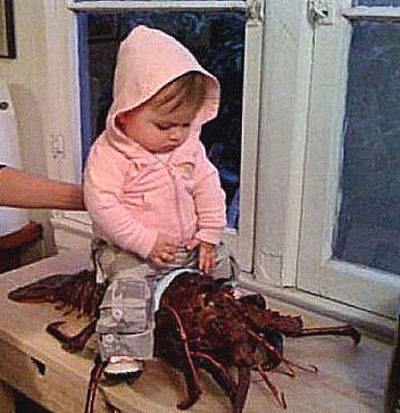 LobsterGirl
