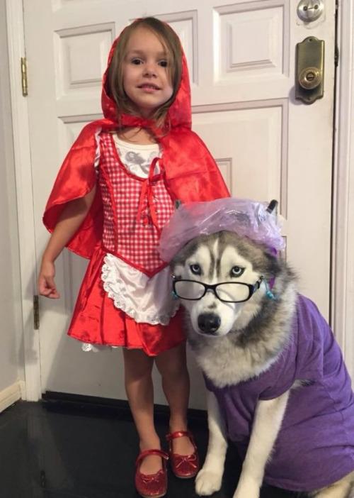 Little Red Riding Hood WIN
