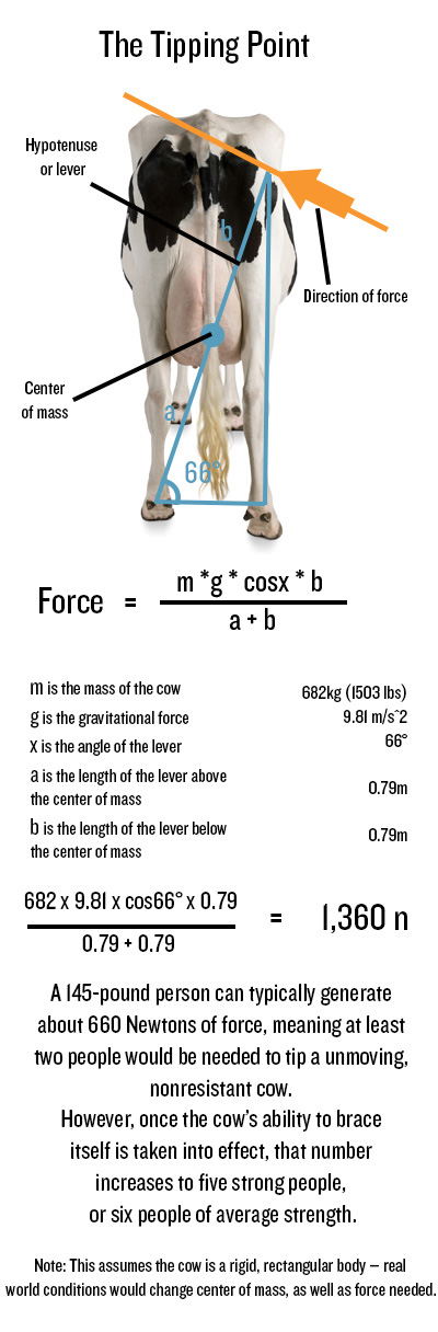 Physics of Cow Tipping 1
