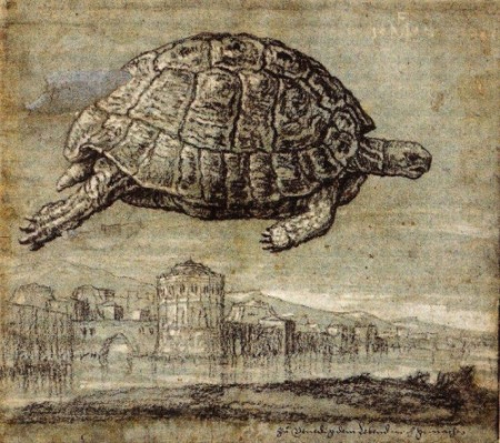 Tortoise above the Venetian Lagoon 1555 Melchior Lorck