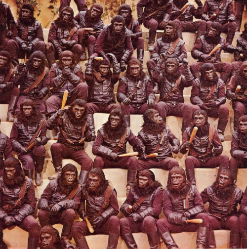 Planet Of The Apes Forum