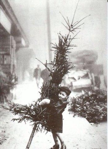 Christmas Eve Tree