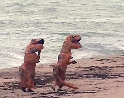 dinosaurs-frolic-on-florida-beach