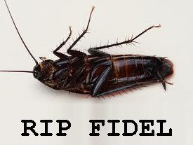 cockroach-fidel-castro
