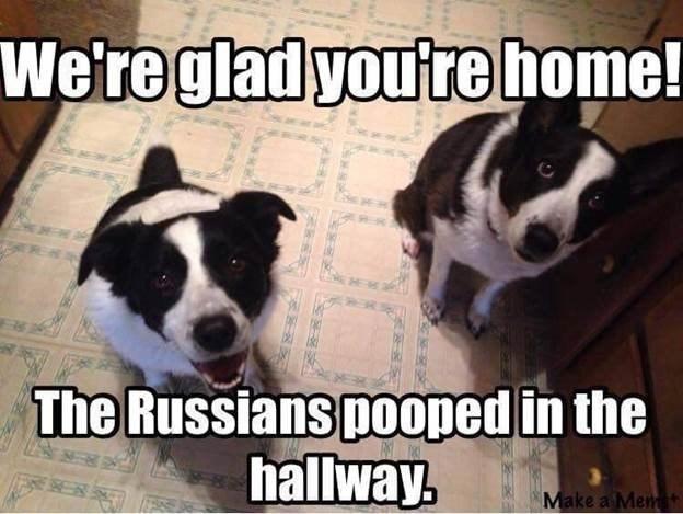 russians-did-it
