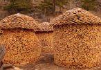 woodpile-5