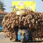 Big Load (4)