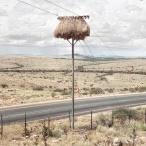 Weaverbird nest 6