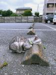 Cats & Wheelstops10