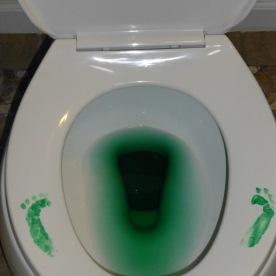 St. Patrick's Day Fail 6