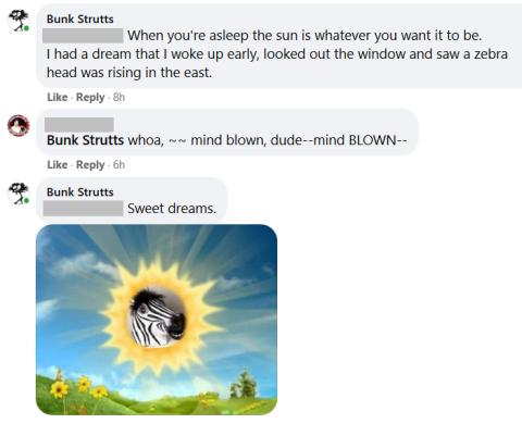 zebra head drean